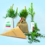 Wachsende Geschenke